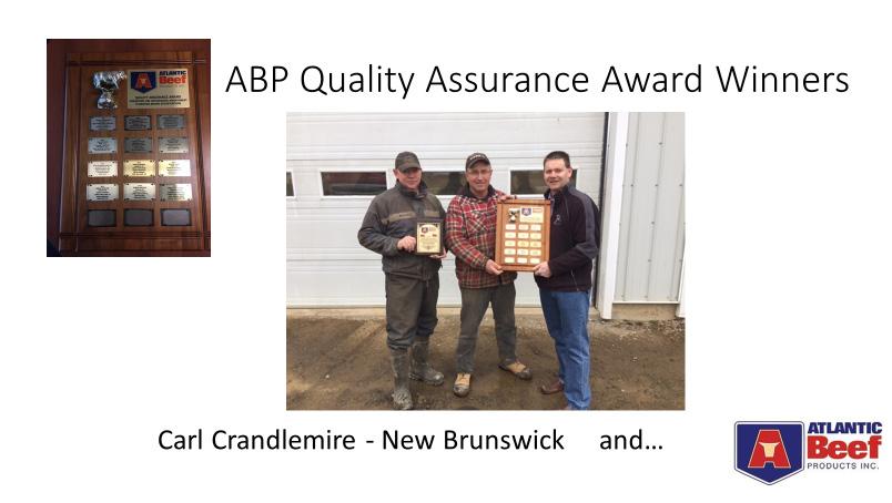 Quality-Assurance-Winners